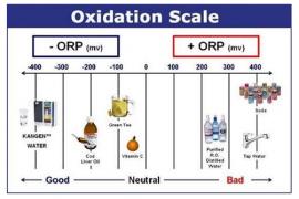 Chỉ số ORP là gì? Tại sao phải đo nó? Mối liên hệ với pH như thế nào?