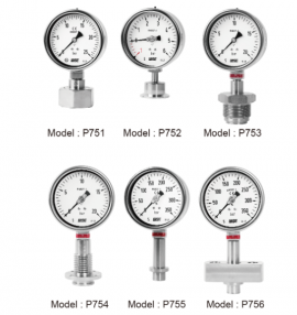 Đồng hồ đó áp suất P755 Wise - Đại lý Wisecontrol Việt Nam